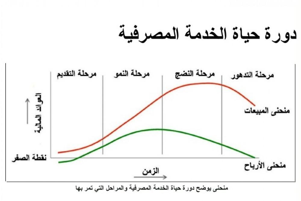 دورة حياة المنتج في السوق